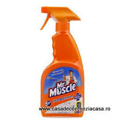 MR MUSCLE SOLUTIE BAIE 500ML